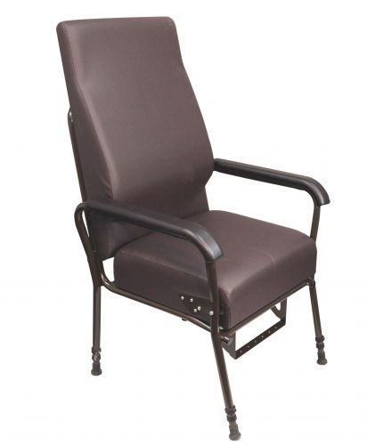 Longfield Easy Riser Lounge Chair