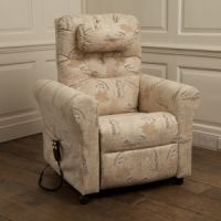 Bronwen Rise and Recline Armchair