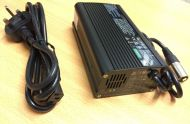 Reverse Polarity OEM TGA Breeze Battery Charger